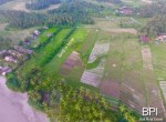 4-plots-of-land-for-sale-in-west-bali-1