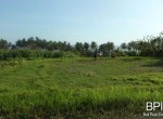 4-plots-of-land-for-sale-in-west-bali-4