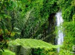 bali-her-best-kept-secret-waterfall-for-sale-1