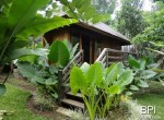 tabanan-retreat-with-ubud-like-surroundings-7
