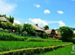 valley-resort-for-sale-surrounded-by-rice-fields-01