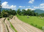 valley-resort-for-sale-surrounded-by-rice-fields-06