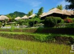 valley-resort-for-sale-surrounded-by-rice-fields-08
