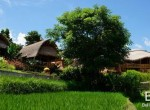 valley-resort-for-sale-surrounded-by-rice-fields-25
