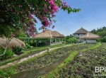 villa-with-restaurant-and-guesthouses-7