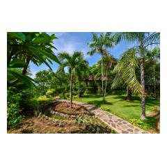 Garden - Palm Living Bali Long Term Villa Rentals