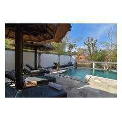 Pool And Sunbeds - Palm Living Bali Long Term Villa Rentals