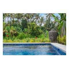 Pool Buddha - Palm Living Bali Long Term Villa Rentals