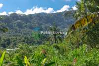 Land with beautiful views in Sambangan Hills