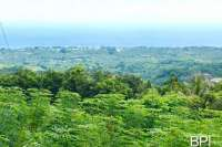 Hillside Land In North Bali for Sale