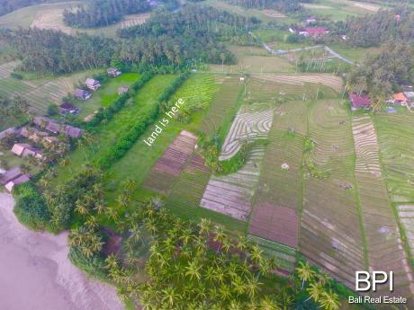 4 Plots Of Land For Sale In West Bali Bali Real Estate By Bpi Property And Villas In Bali Indonesia
