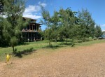 Palm-Living-Beachfront Land-Anturan-Lovina3