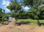 Palm-Living-Beachfront Land-Anturan-Lovina4