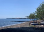 Palm-Living-Beachfront Land-Anturan-Lovina2